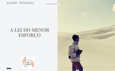 A LEI DO MENOR ESFORÇO